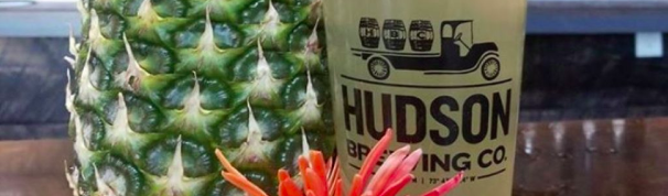 Hudson Brewing's Annual Pineapple Party, Feb 29
