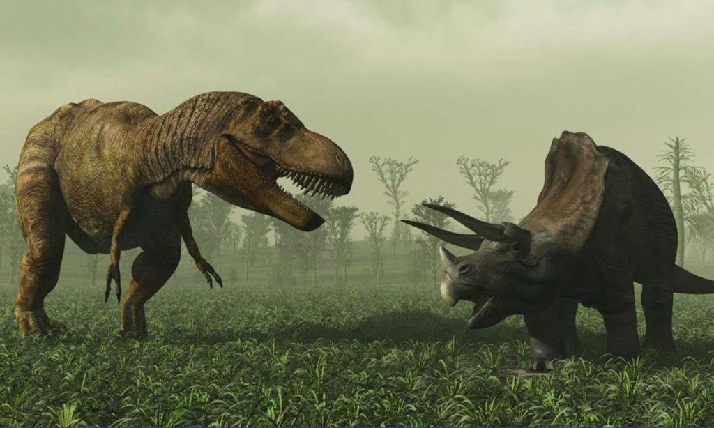 Dino-1024x614